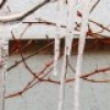 Pas på frosten! – Frosten kan koste dyrt for husejere