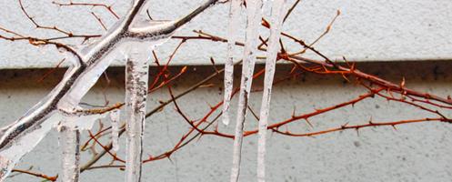 Frostsprængning kan koste dyrt